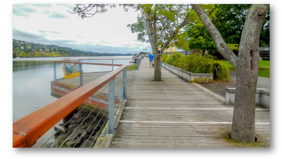 The trail begins on a lovely boardwalk beside the Tamar River