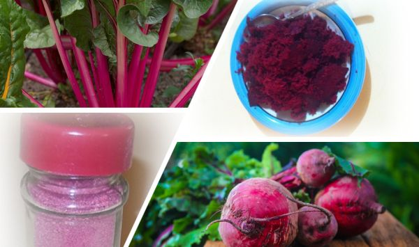 Add the Nutritional Value of Beet Pulp to Your Meal
