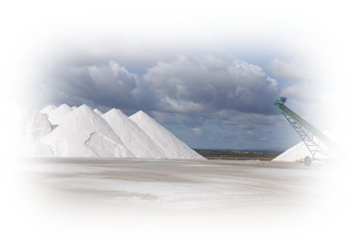 Huge piles of sea salt