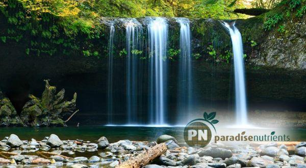 Paradise Nutrients - waterfall