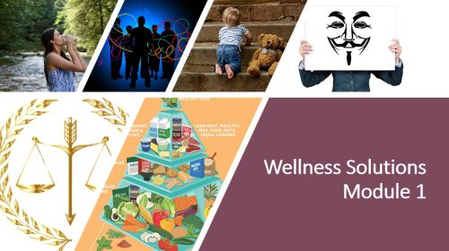 Wellness Solutions Course - Module 1