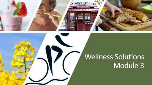 Wellness Solutions Course Module 3