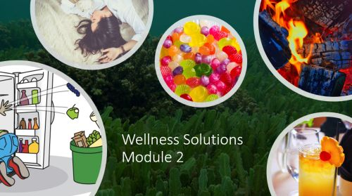 Wellness Solutions Course Module 2
