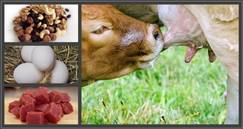 Cream, meat eggs & nuts for good sources of good fats