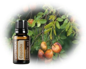 Copaiba - powerful immune system boosters