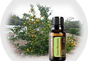 Green Mandarin - powerful immune system boosters
