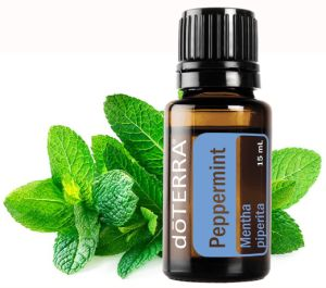 Peppermint - powerful immune system boosters