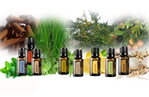powerful immune system boosters