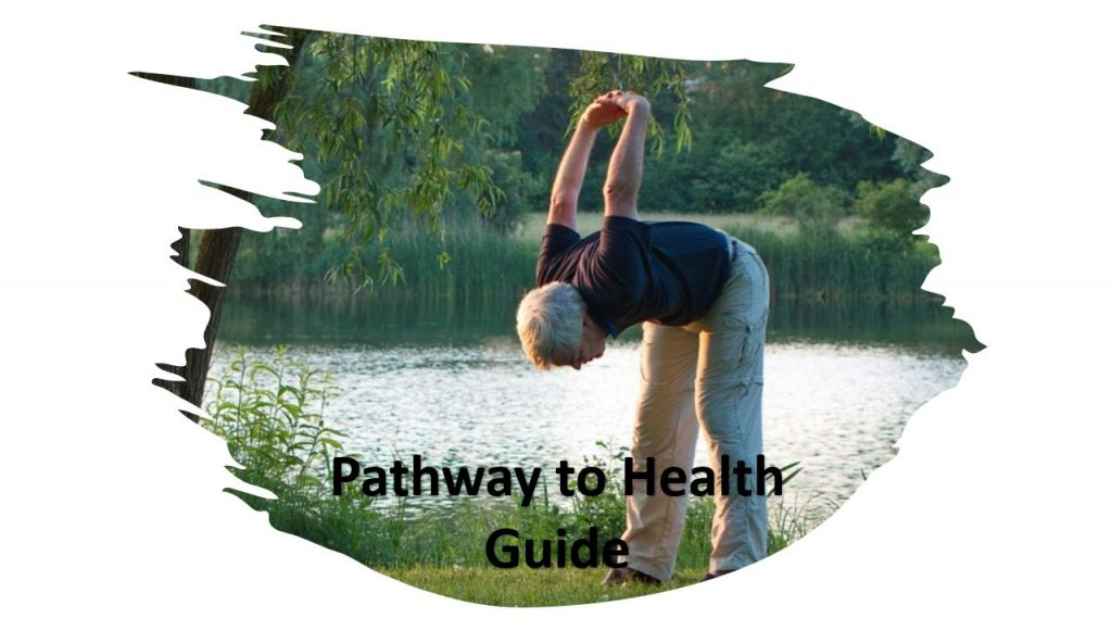 Wellness solutions pathway to health